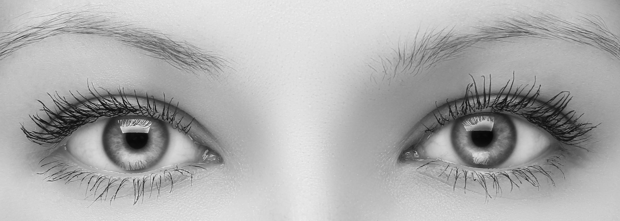 eye health at brad abrahams.jpg