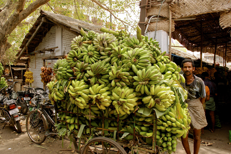 banana-mkt.jpg