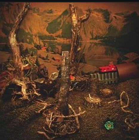 Robert Gomez – Pine Sticks and Phosphorus