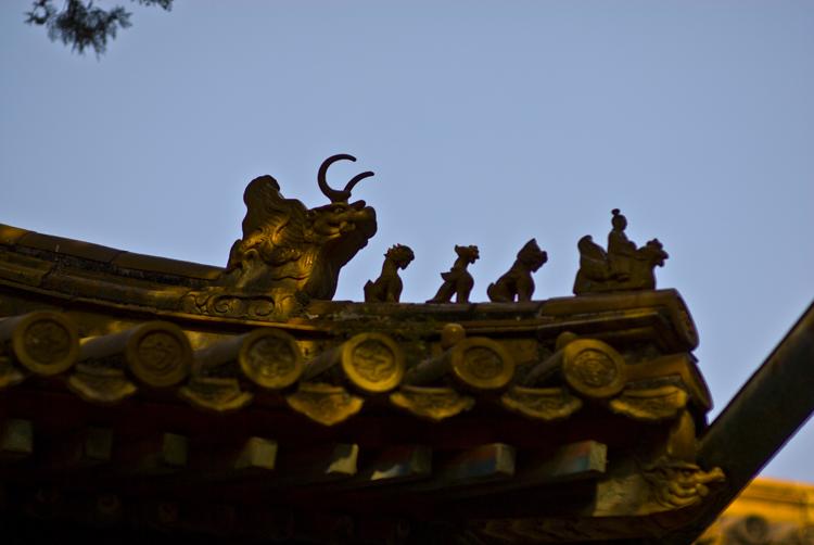 China021.jpg