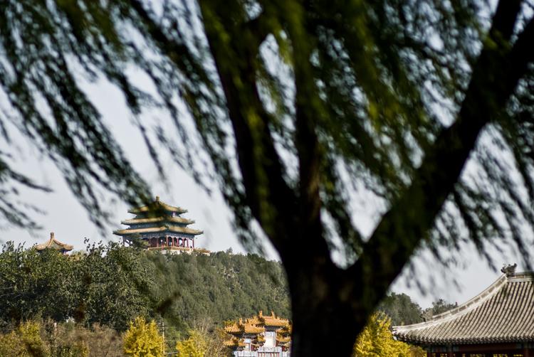 China025.jpg