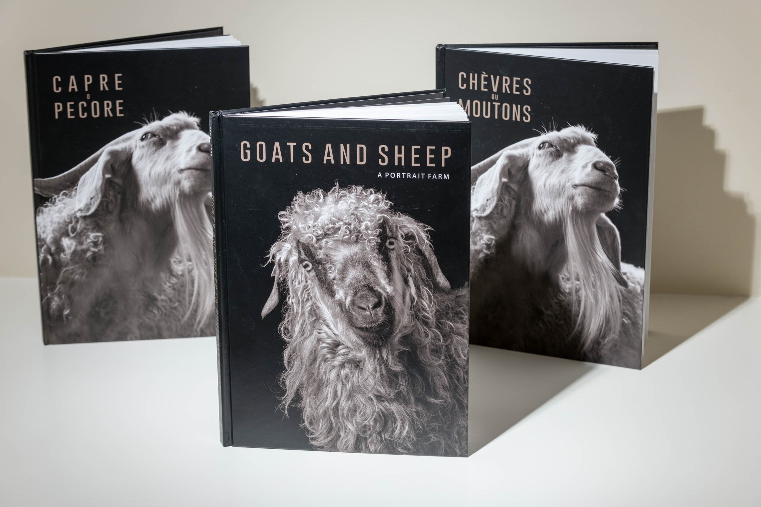 Goats And Sheep: A Portrait Farm , published in Milan by  5 Continents Editions , is now available. The English-language edition, set for U.S. release March 1, can be ordered now from the  distributor  or preordered from your favorite bookseller. The  Italian  and  French  editions can be ordered directly from the publisher.