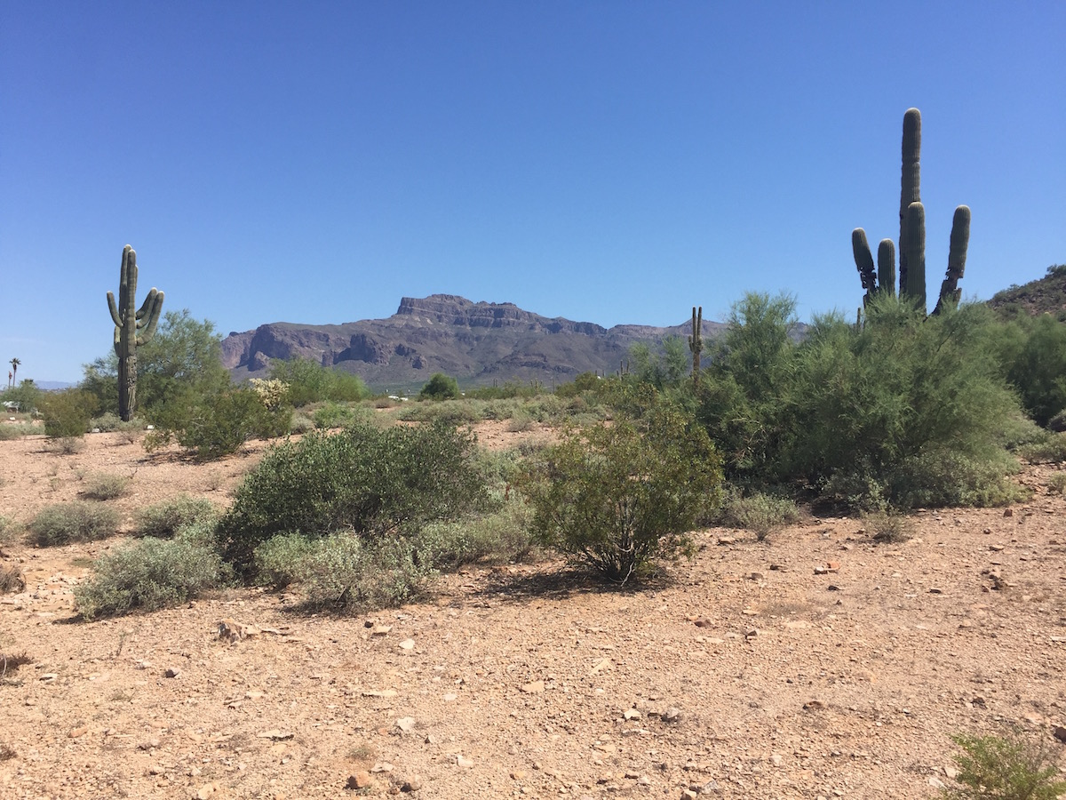 superstition-view-at-silly-mountain