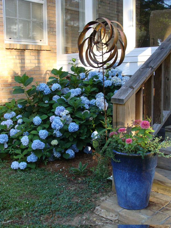 blue pot with hydrangeas reference photo