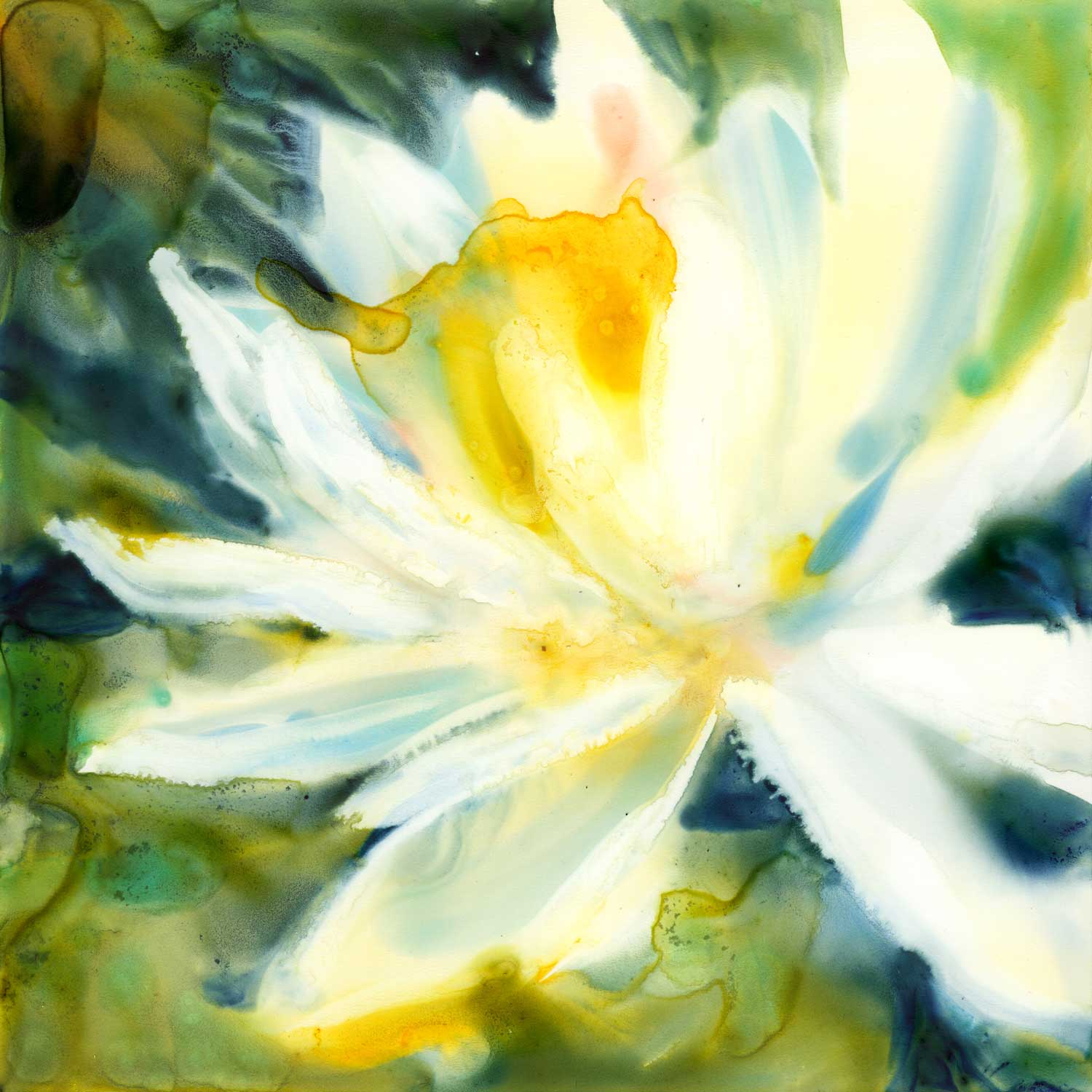 """Water Lily."" 6x6"" watercolor on Yupo mounted on board. Click the image to find out more."