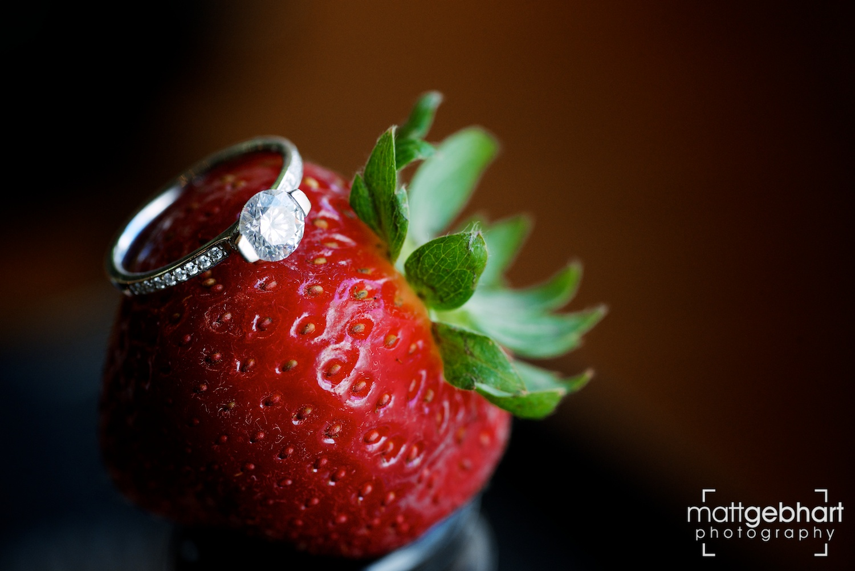 Seattle Rose Garden wedding  002.jpg