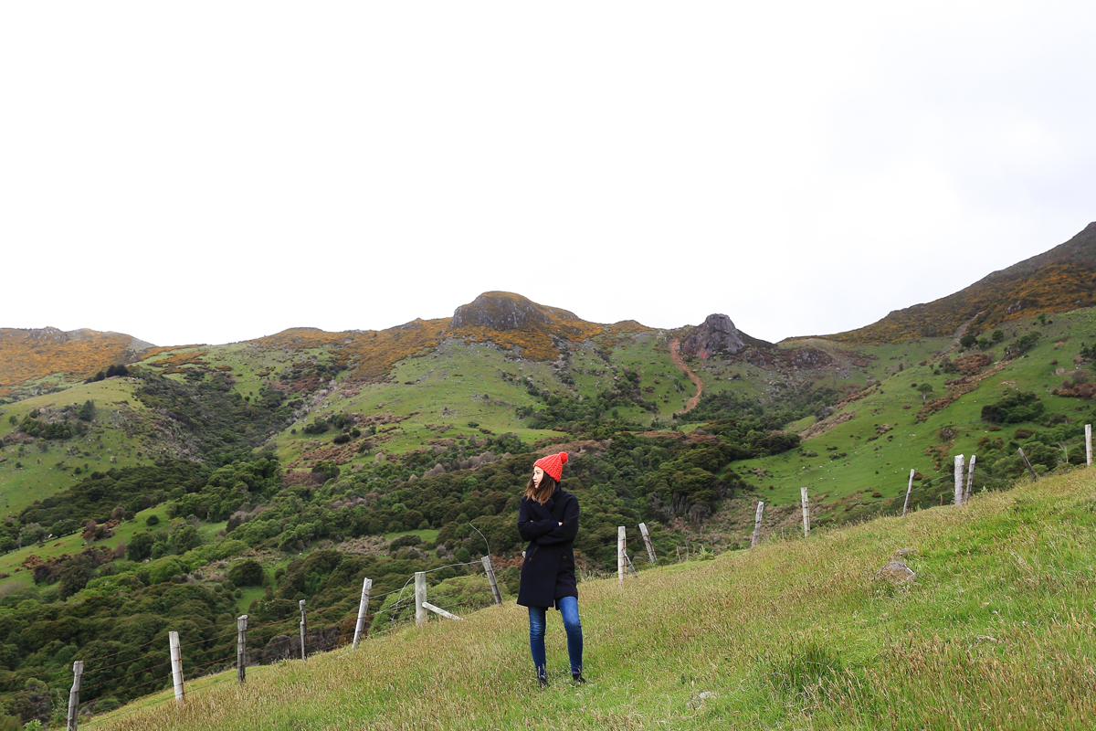 On the hills of Akaroa, New Zealand, wearing:  I love Mr Mittens Beanie  |  French Trotter Coat  |  Acne Studio Jeans  |