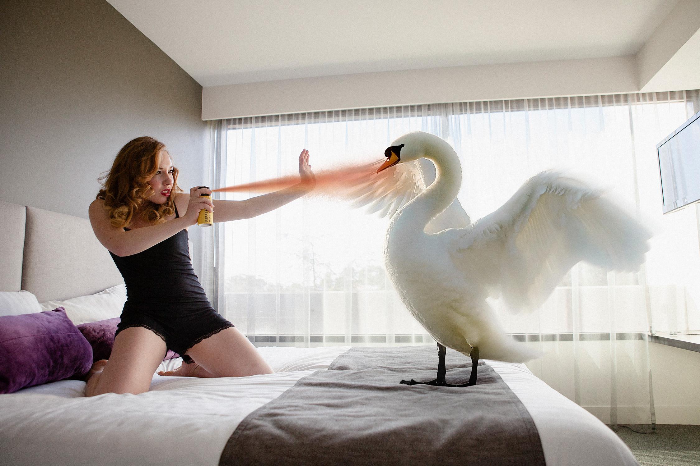 Alternate Endings #1: Leda & the Swan