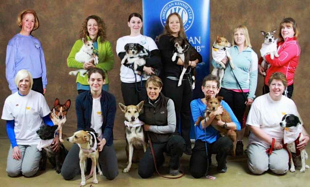 Mixed breeds at AKC Nationals
