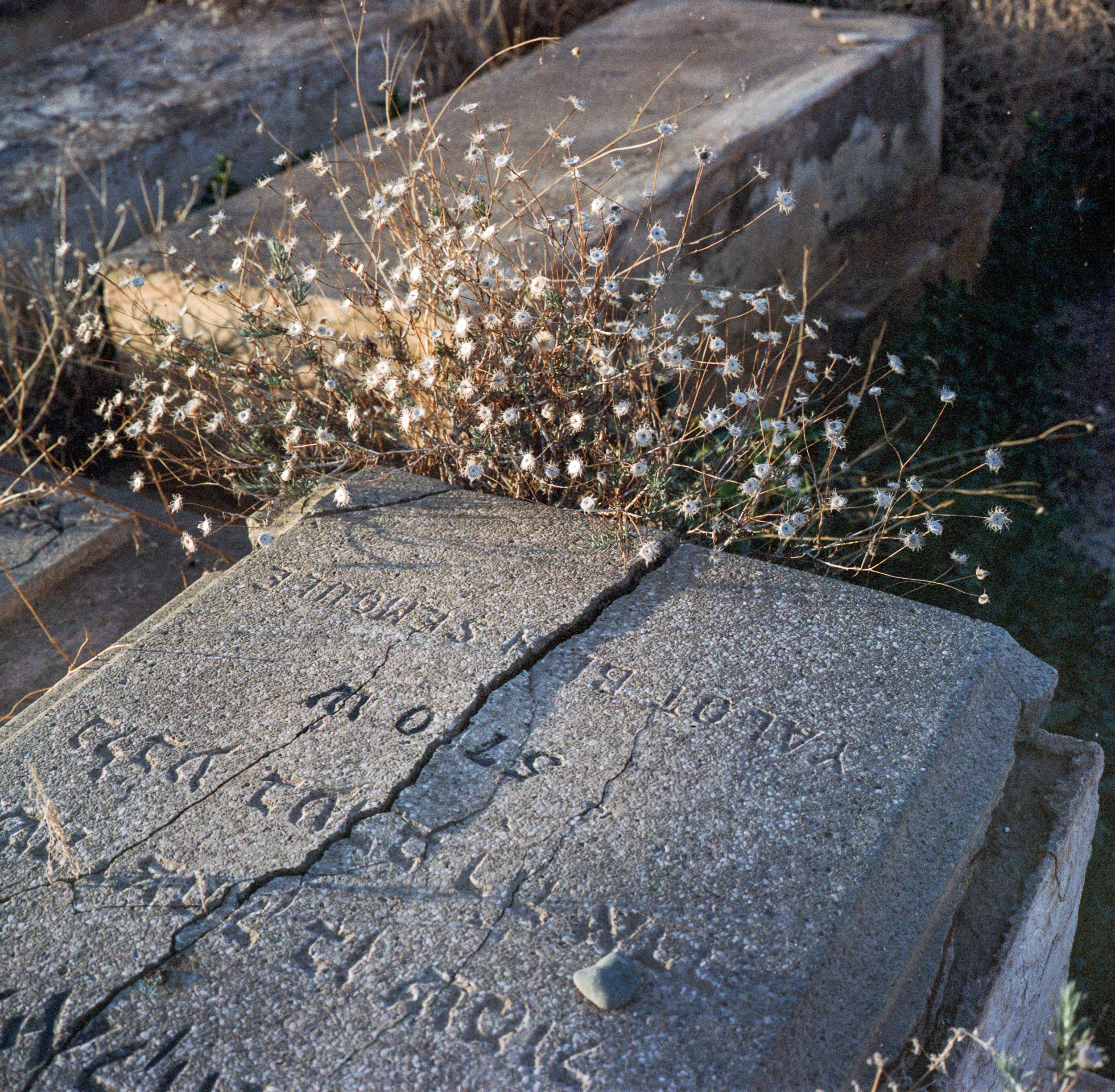 002_2015_MOR_Cemeteries_scans_0009.jpg