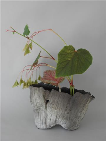 Ikebana — The Barn Swallow