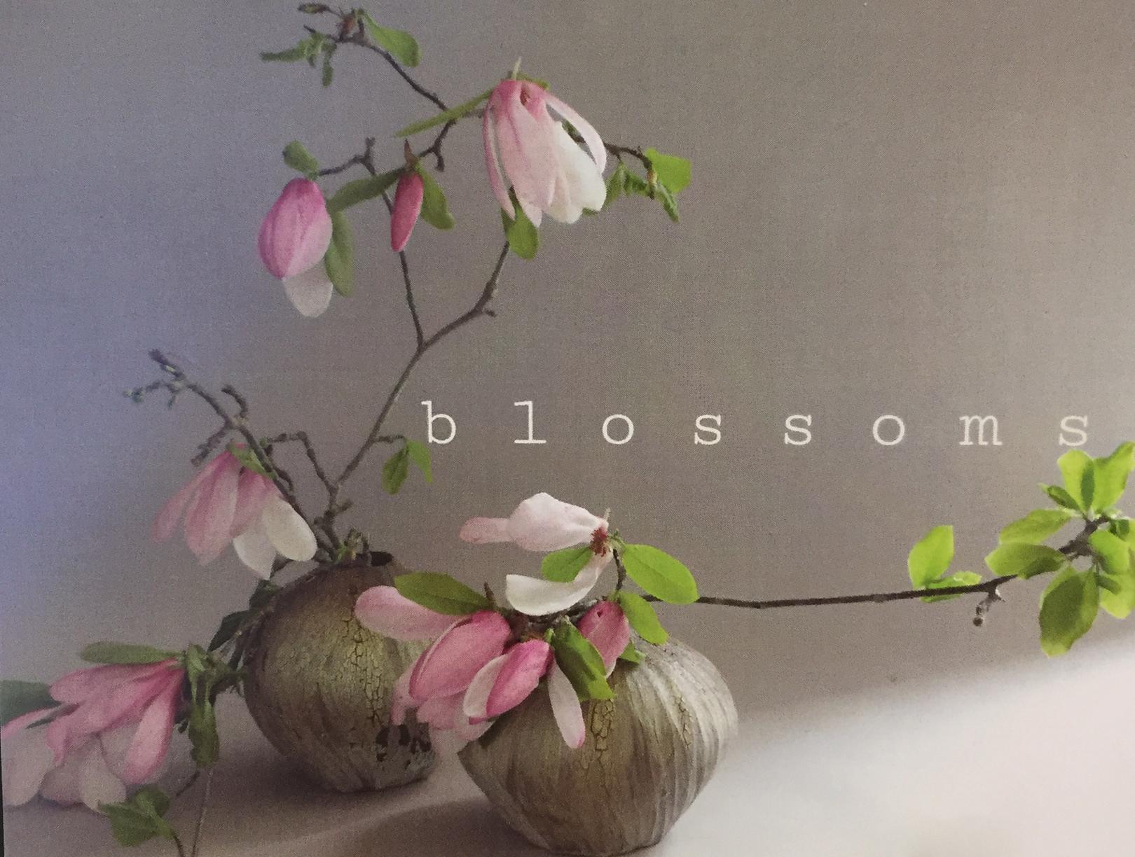 blossom3.jpg