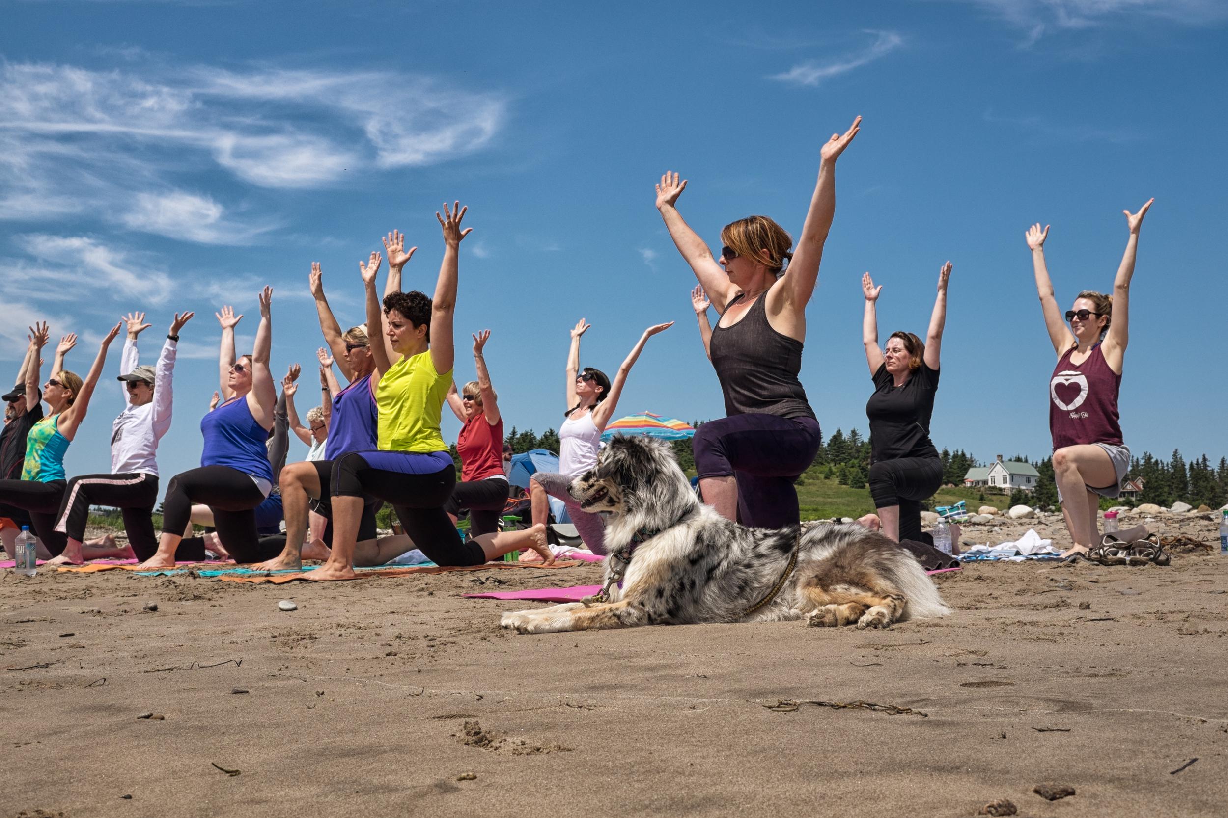 Happy Fit Beach Day 2014-13.jpg