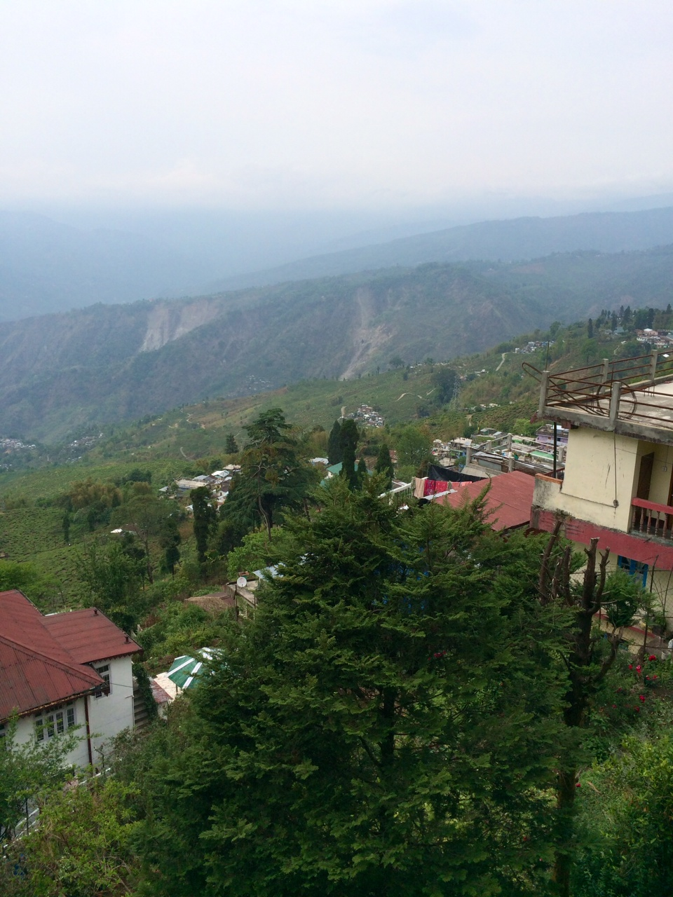 The View from Darjeeling