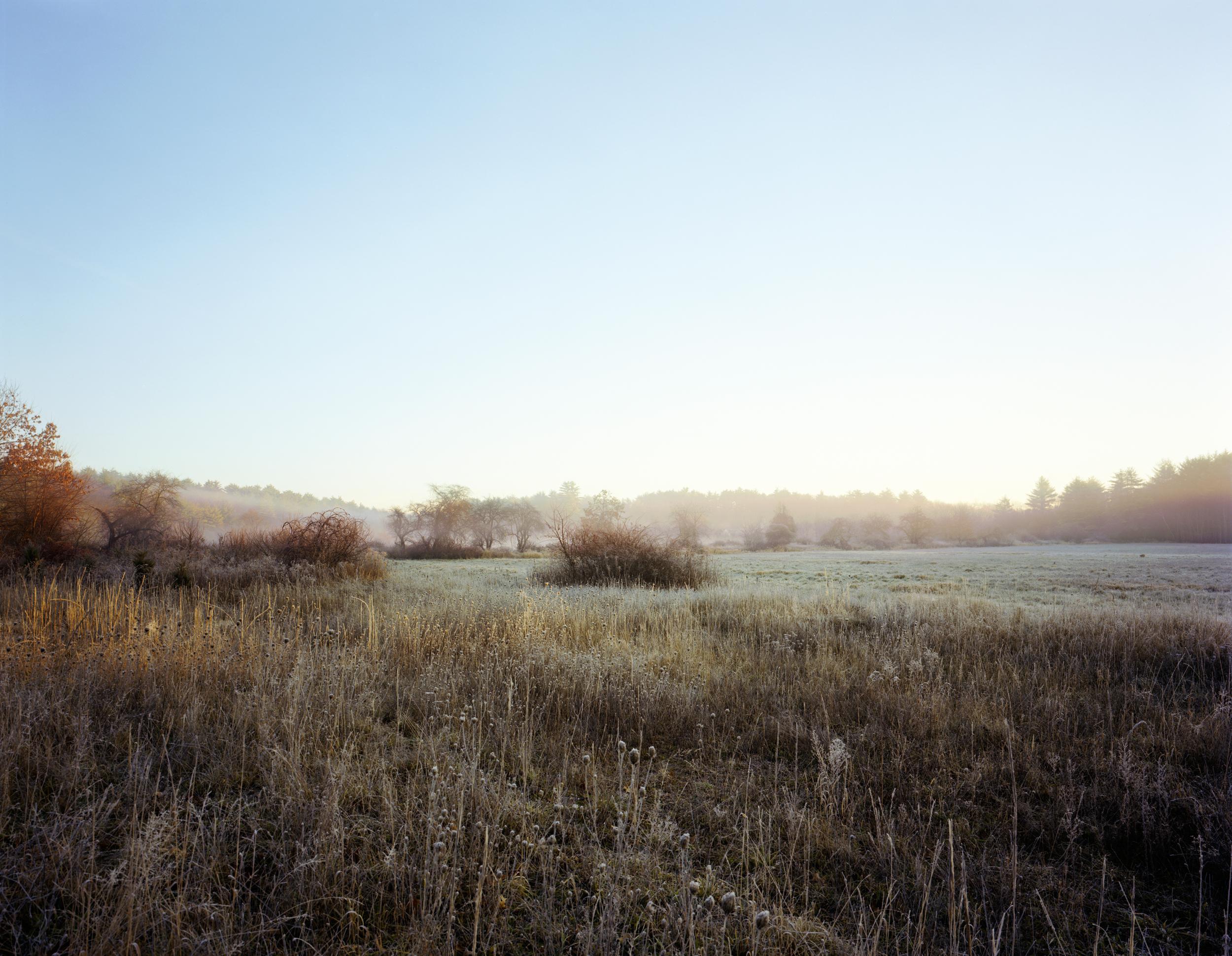 03-581 Meadow (cover), full.jpg