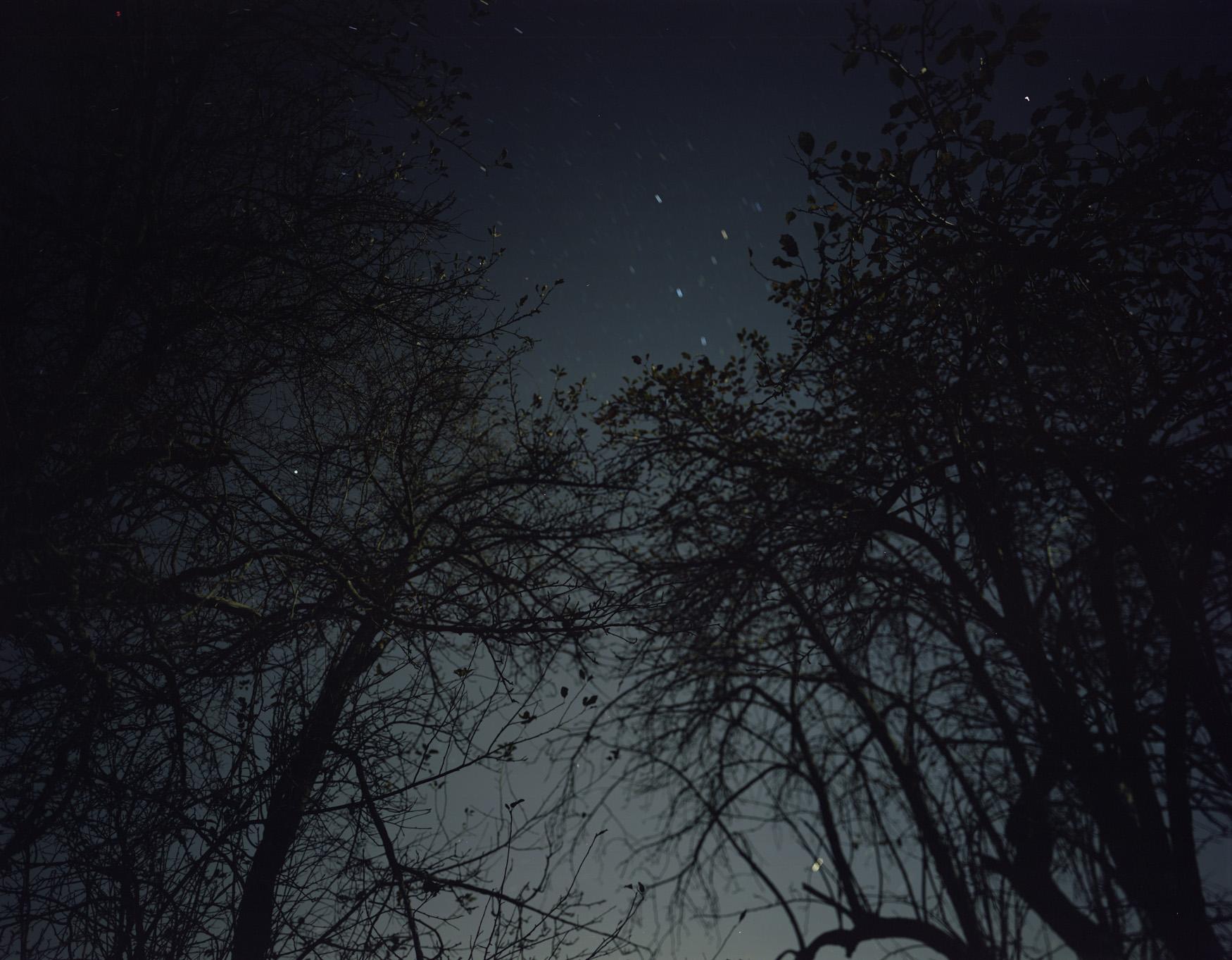 05-335 Meadow, night.jpg