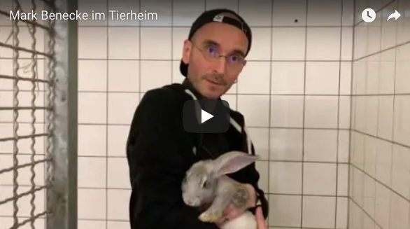 MARK BENECKE IM TIERHEIM -