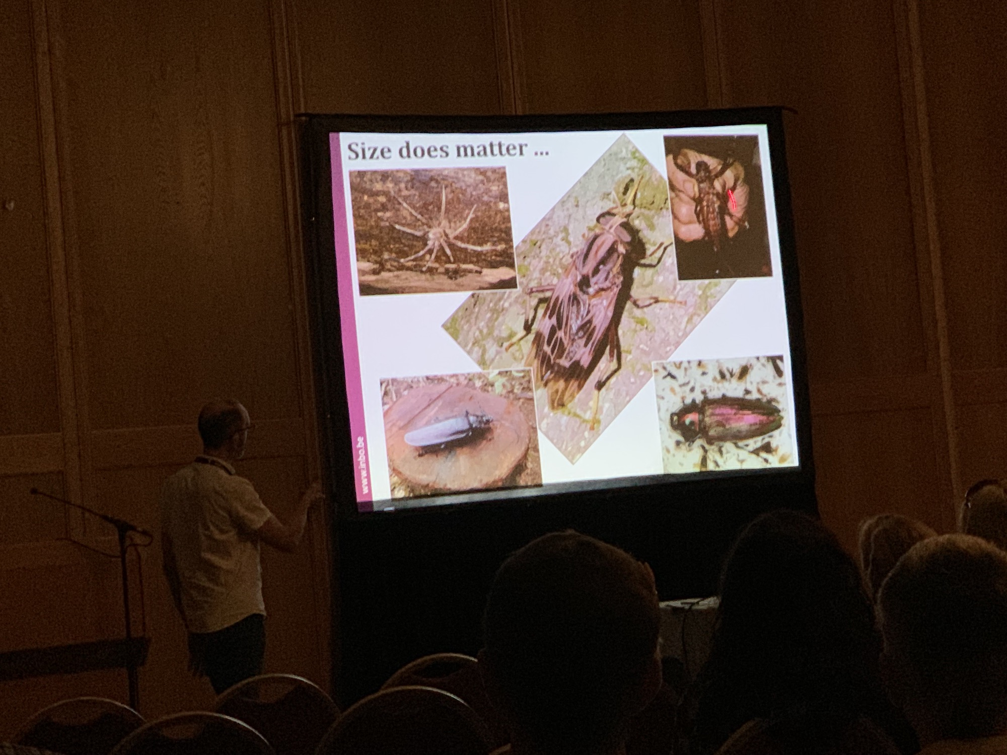 mark_benecke_ICD9_dipterology_world_congress_windhoeck_namibia - 184.jpg