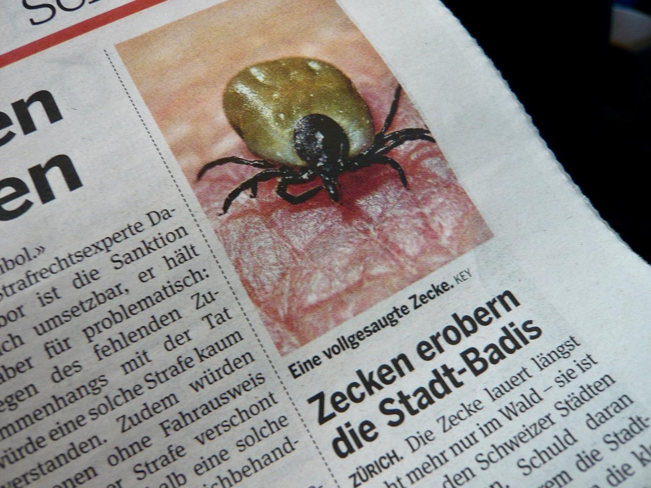 mark_benecke_herbert_hoffmann_schweiz - 16.jpeg