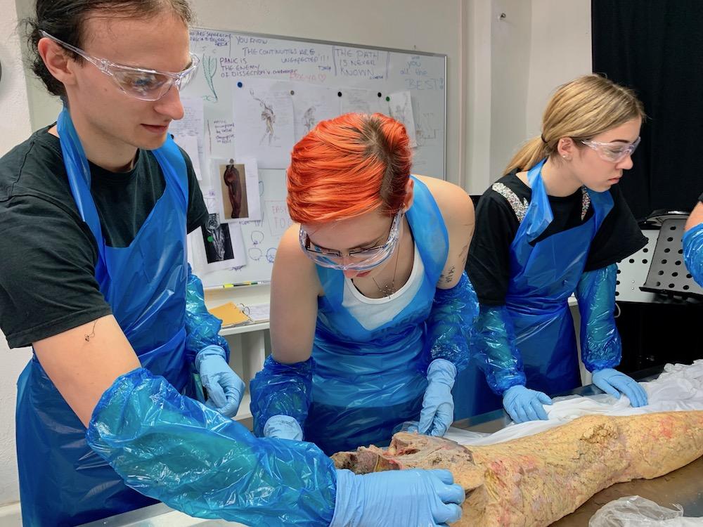 mark_benecke_forensic_summer_training_entomology_plastination_body_worlds - 92.jpg