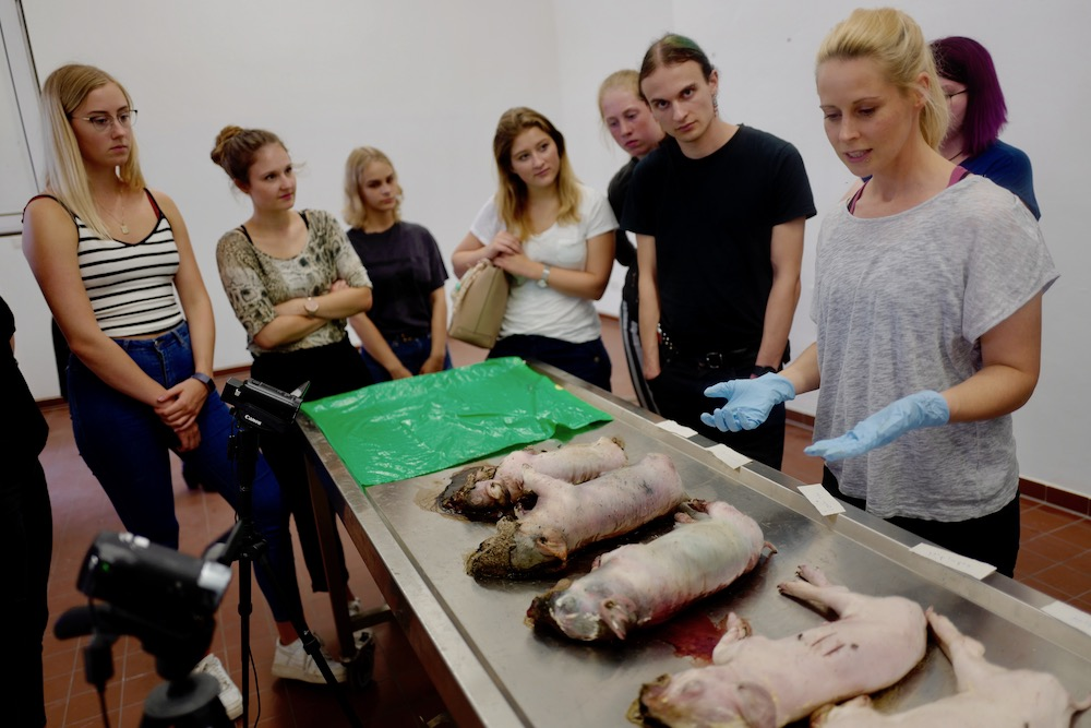 mark_benecke_forensic_summer_training_entomology_plastination_body_worlds - 108.jpg