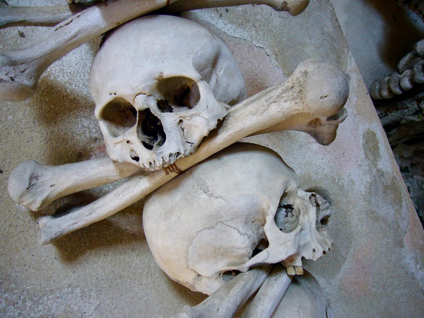 mark_benecke_kutna_hora_sedlec_prag_prague_ossuary_ossuarium - 106.jpg