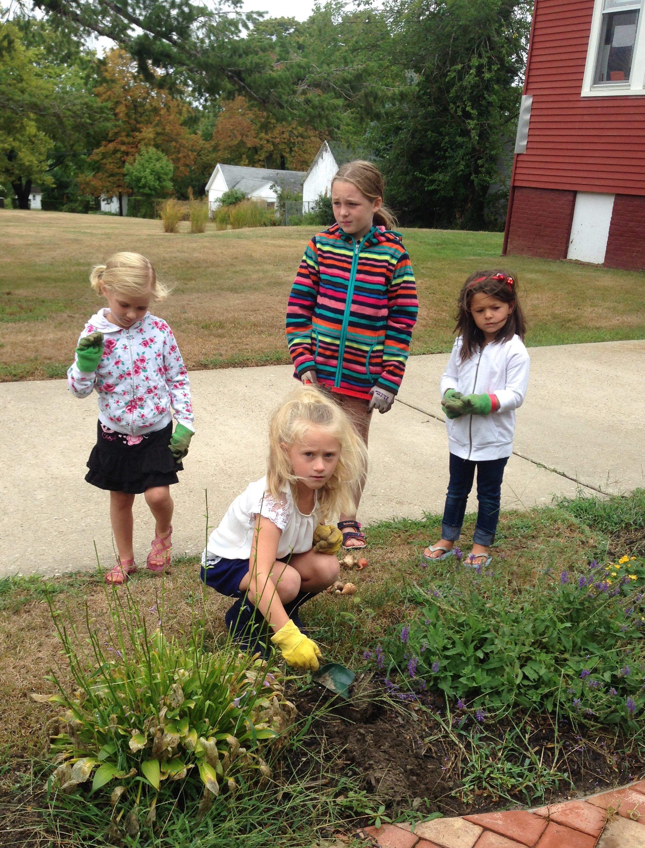 Sofie , Aulis, and Alexa work with Lila to plant