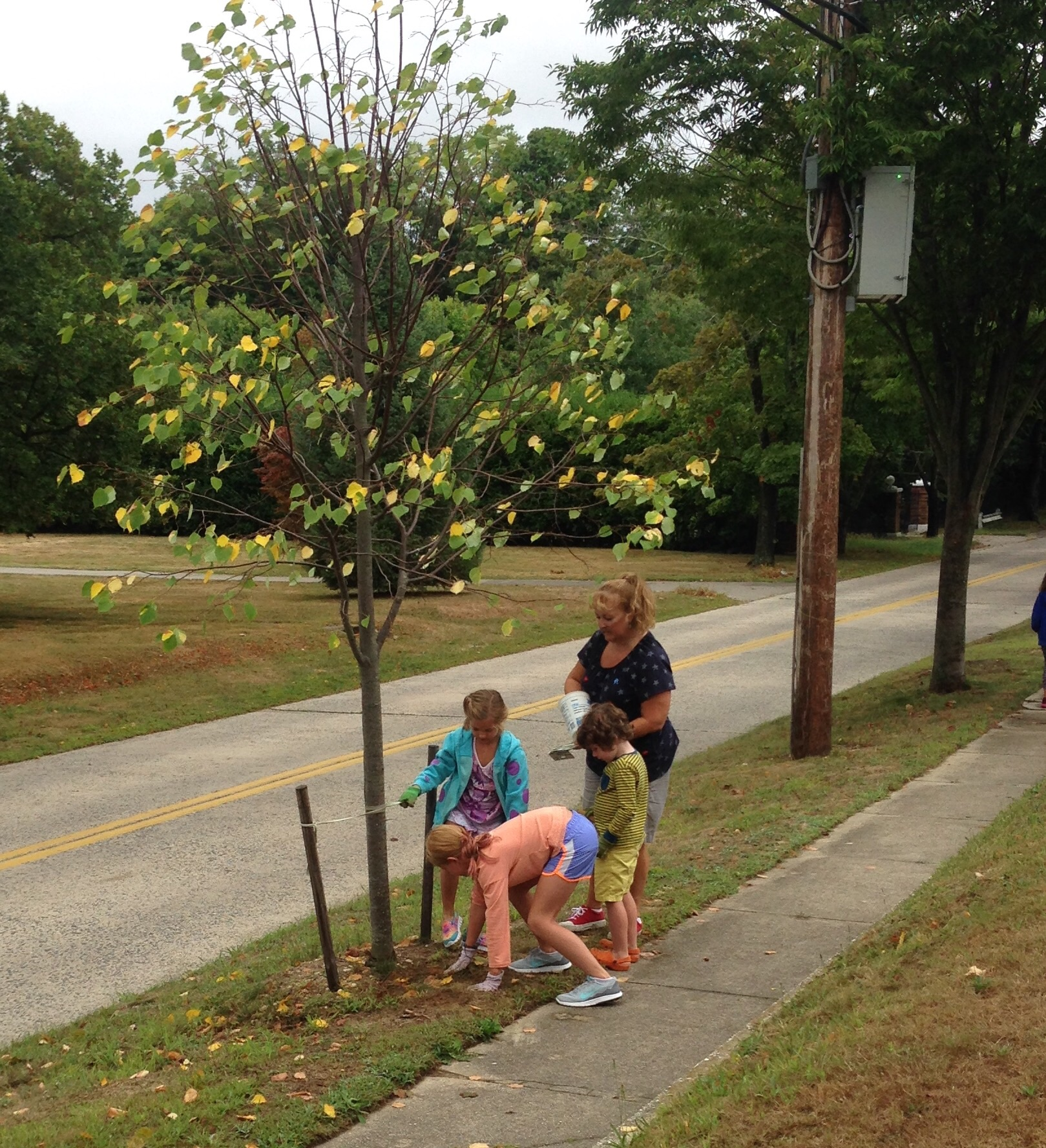 Anna, Anna, and Oakley work around one of our new trees