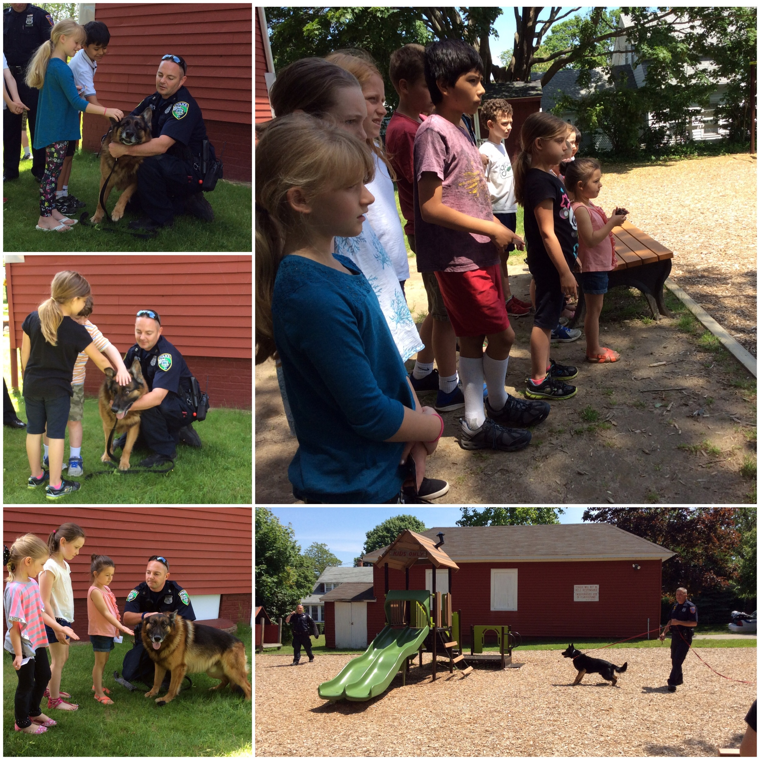 The students were able to pet Rocky!     Hudzin on his leash with Officer Mele, and Officer Morris acts as a suspect