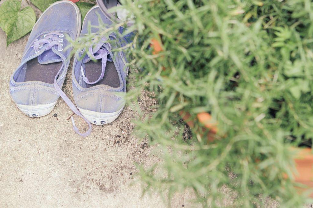 waiting for saturday : venessa arizaga sneakers