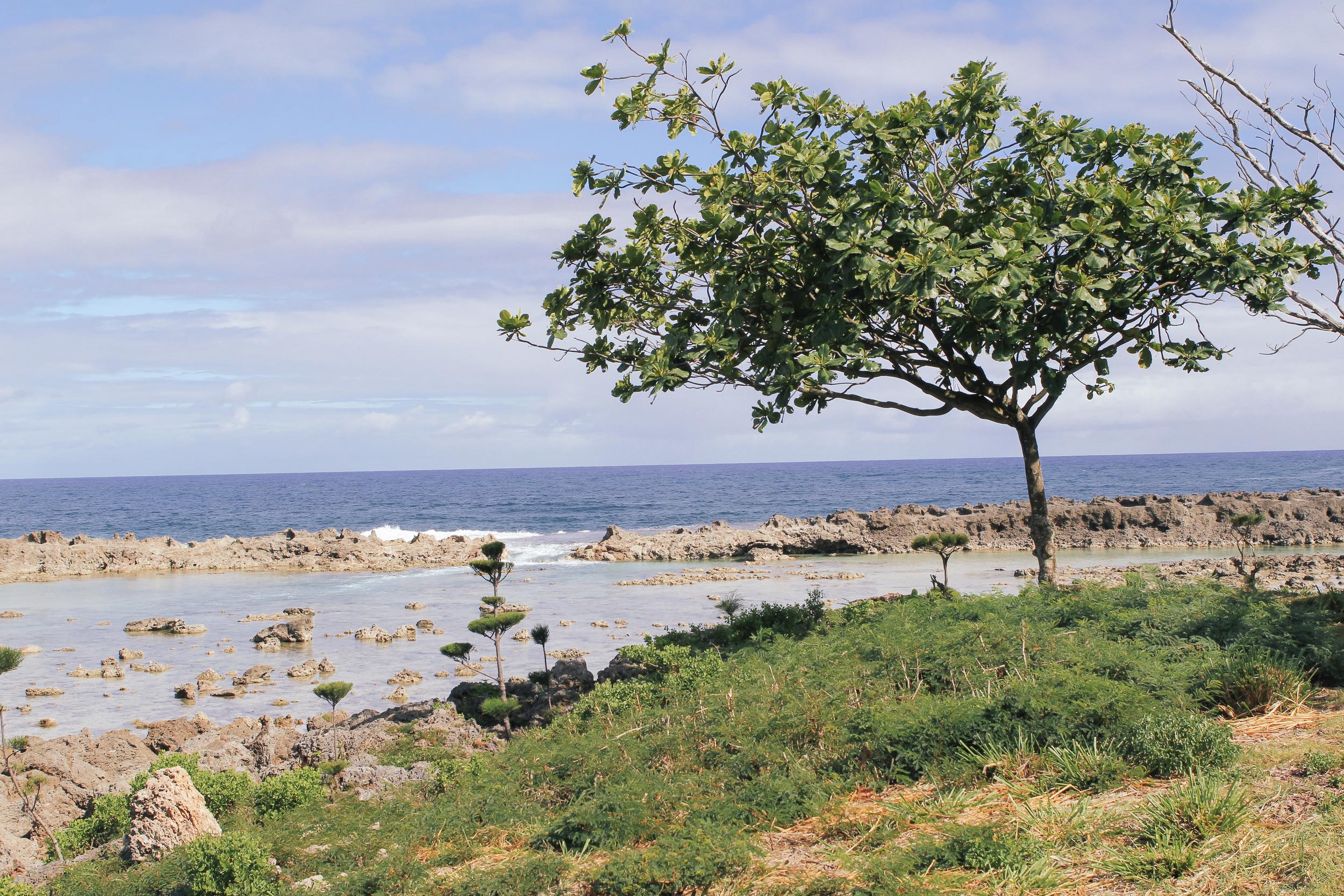 waiting for saturday : hawaii shot