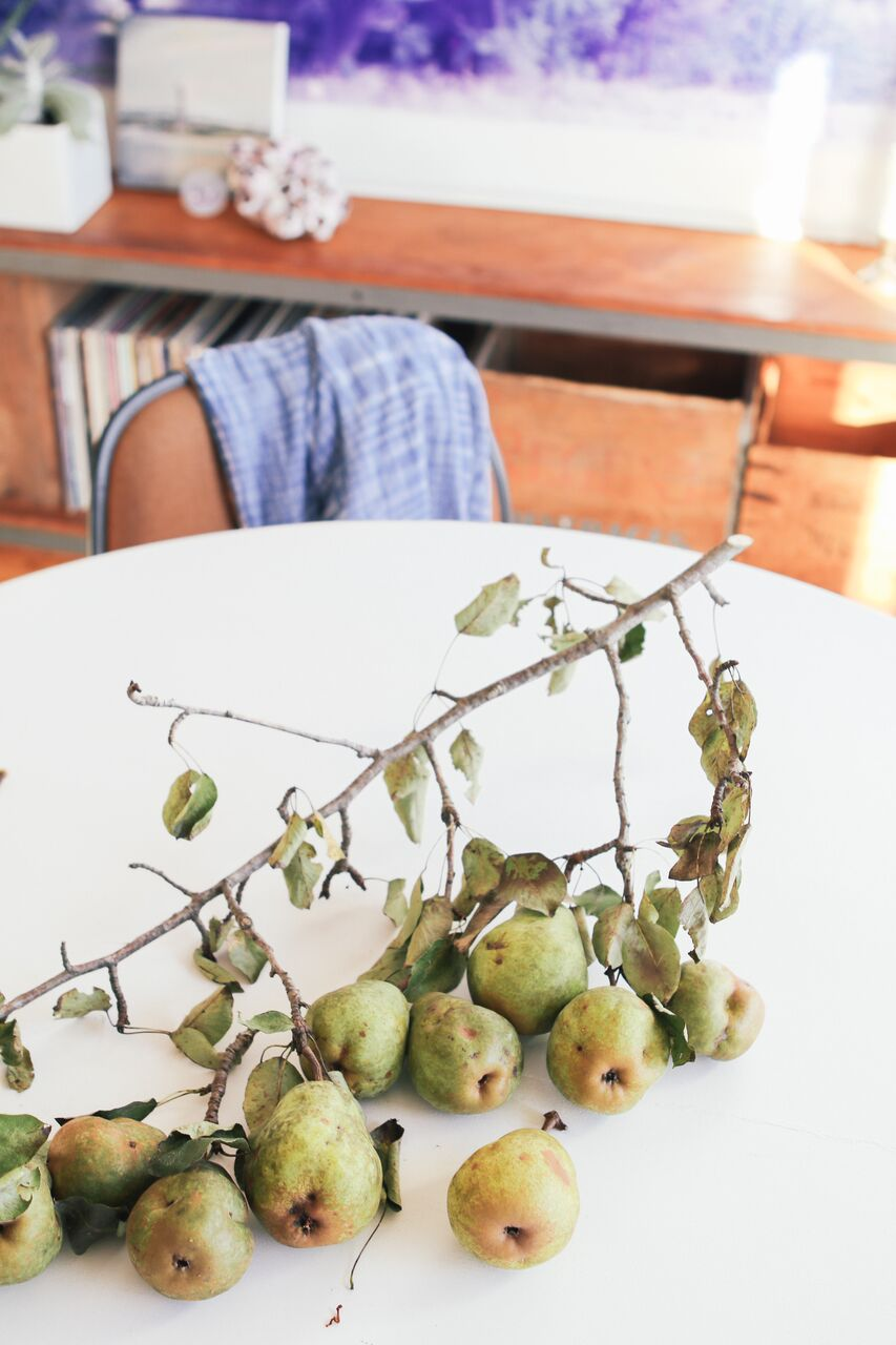 waiting for saturday : kee edwards home upstate pears