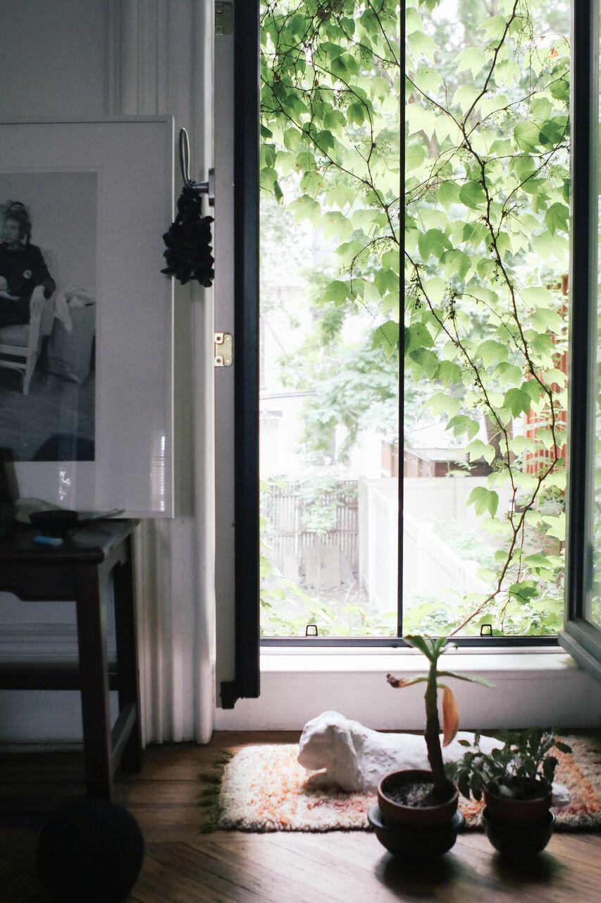 waiting for saturday : mona kowalska home brooklyn