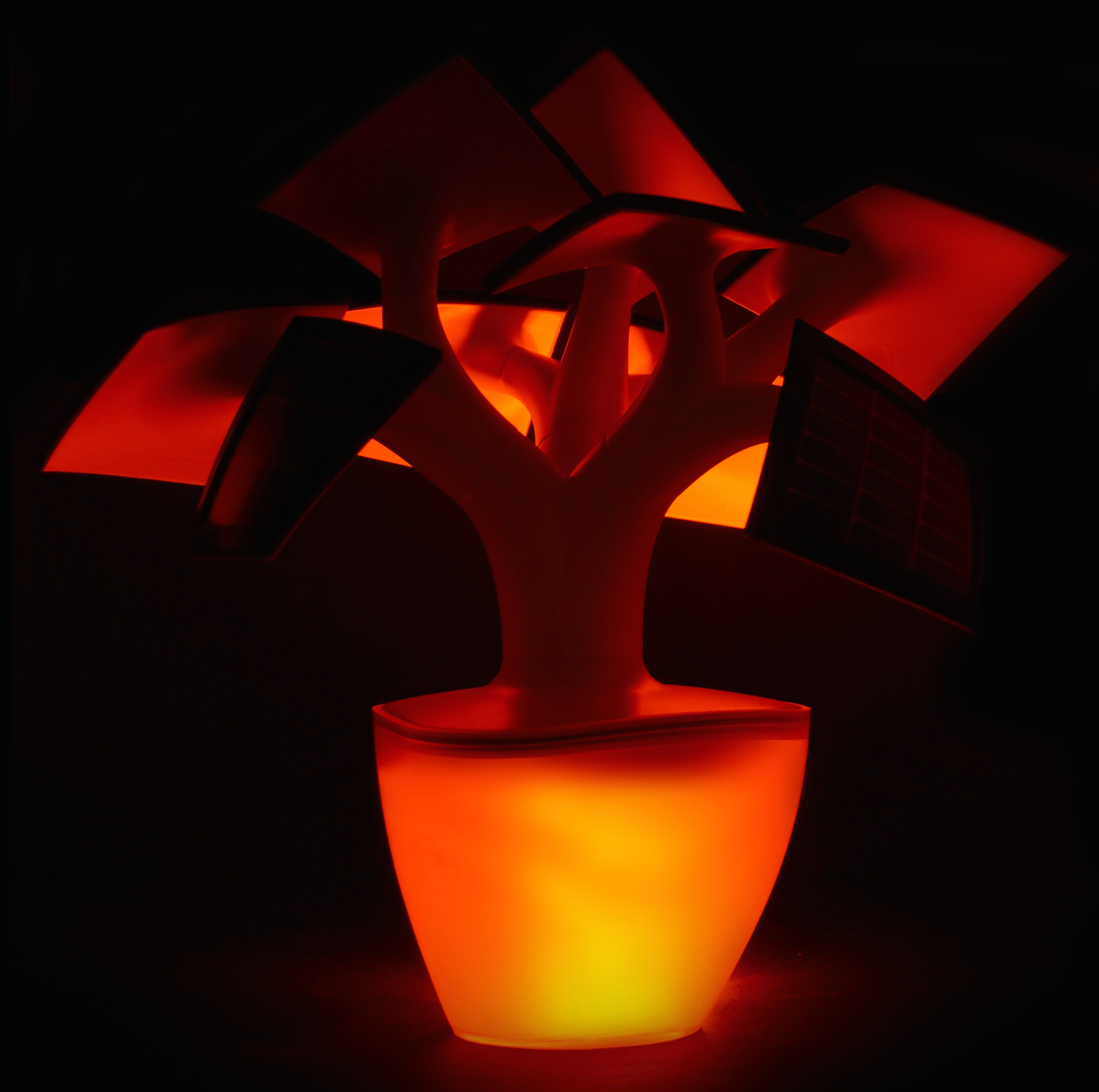 Turn your Electree into a lantern