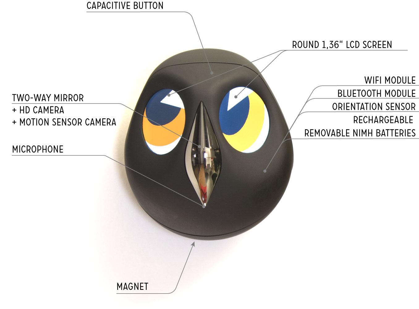 Ulo's anatomy