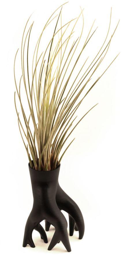 'Mangrover' concept