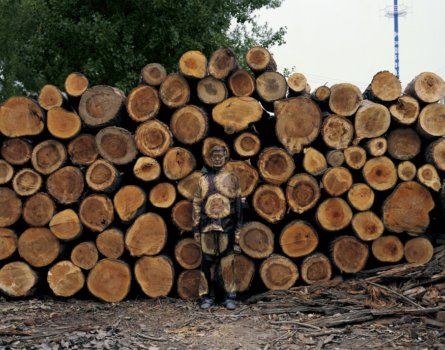 Hiding in the city, No.88, Sawmill, 2010, variable sizes