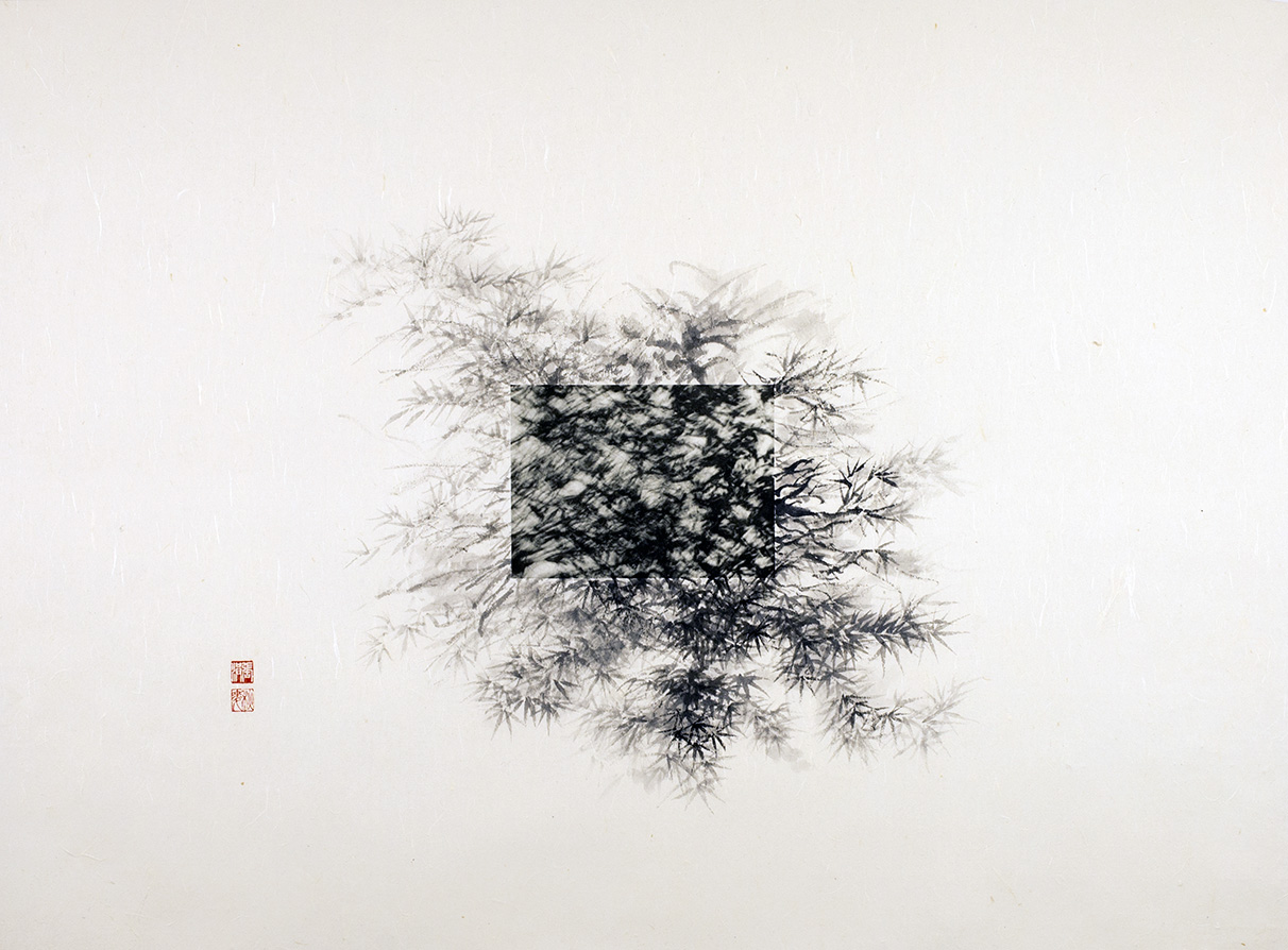 """Michael Cherney & Arnold Chang, """"Ink Bamboo"""", photography and ink on xuan paper, 2015"""