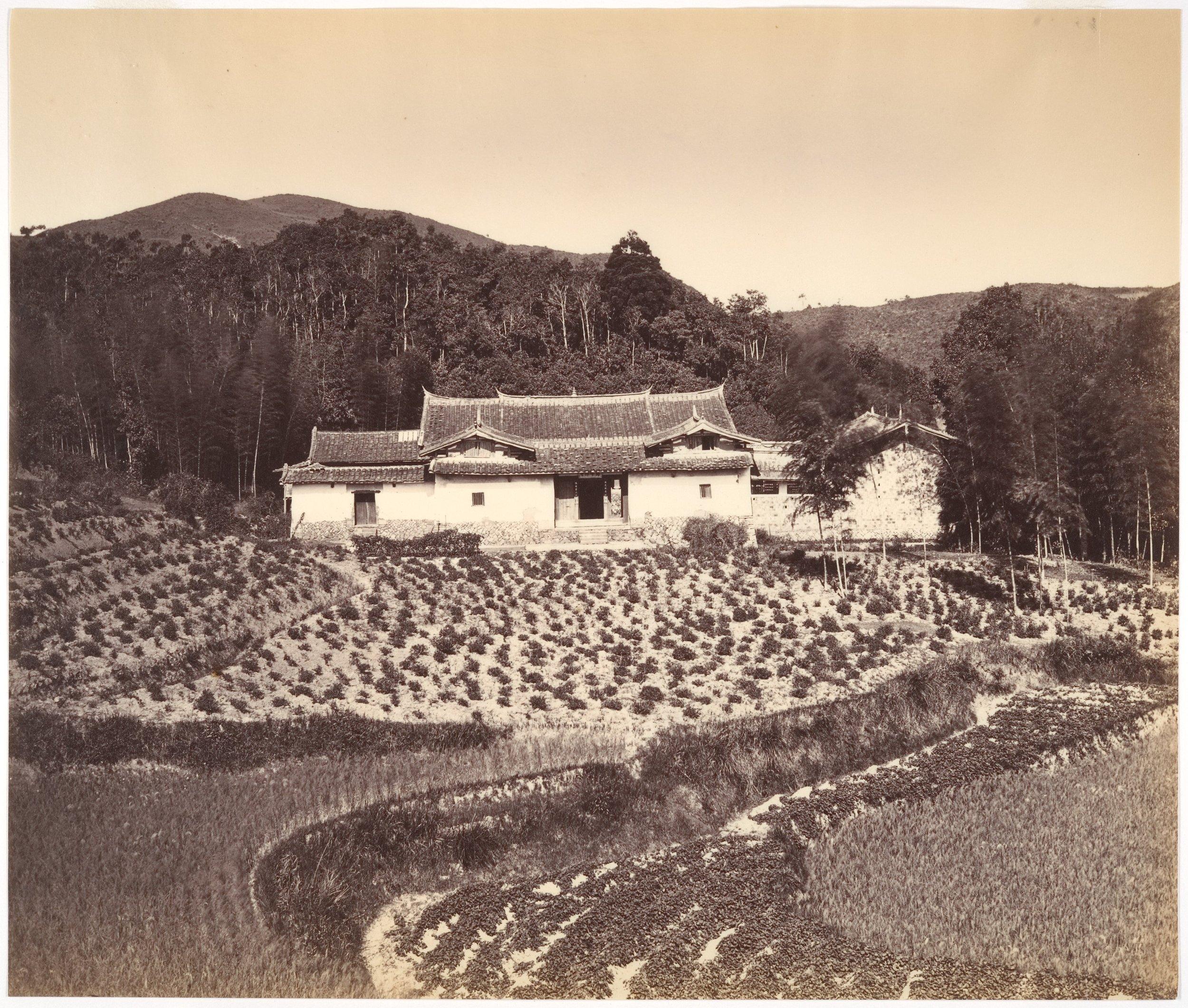 Woo-She-Shan, 1876, Albumen silver print from glass negative