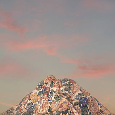 "Liu's ""Mountain Blossom"" series"