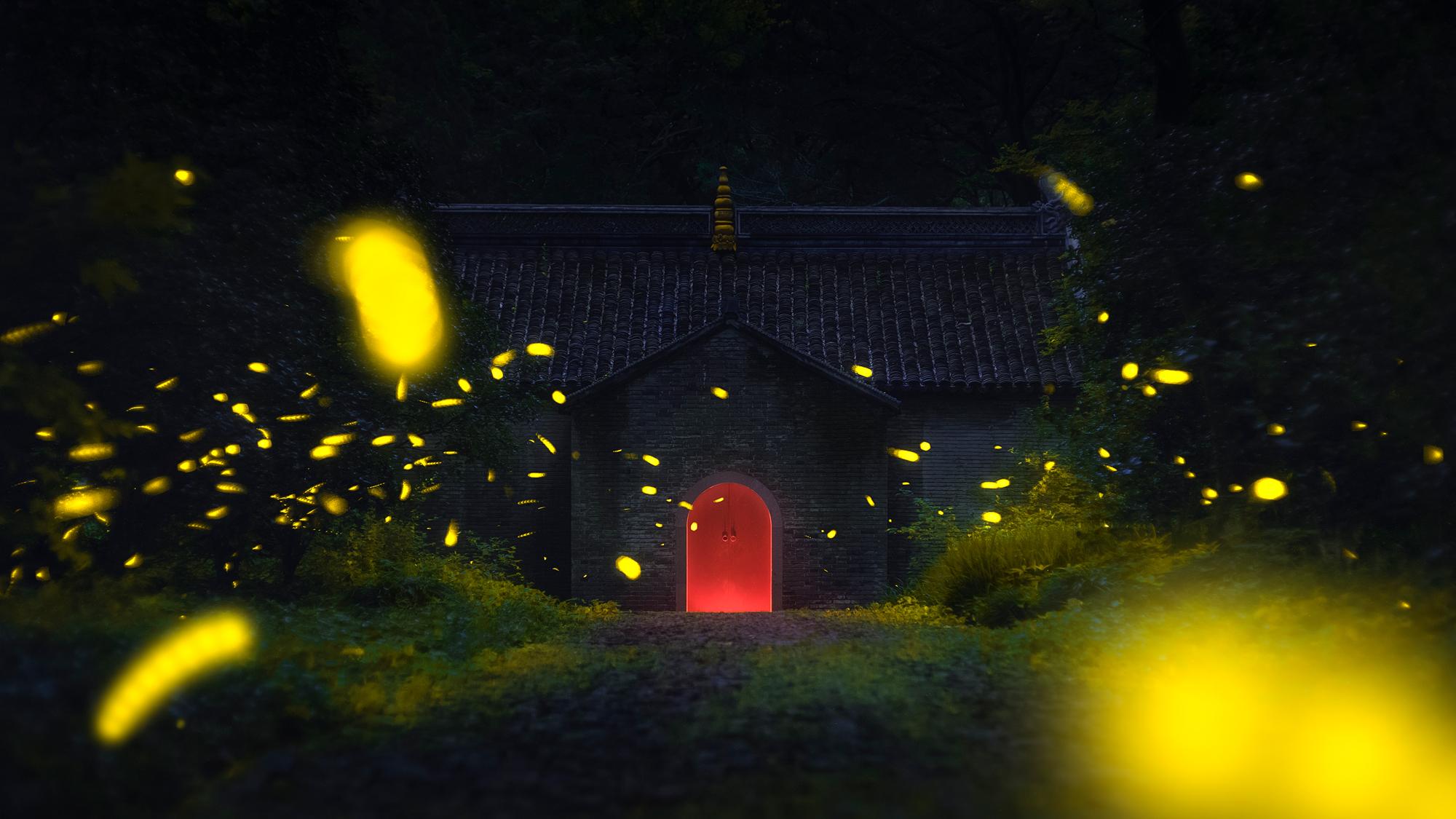 Fireflies Flying,  2008  © Jiamin Lu, China, Entry, Open, Wildlife, 2018 Sony World Photography Awards