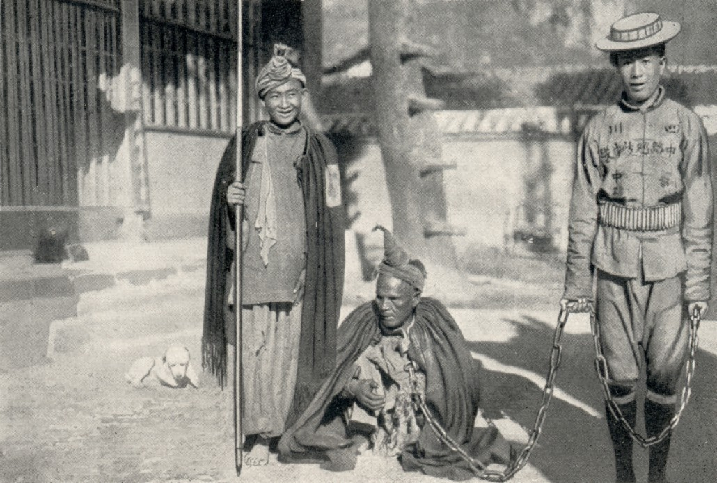 """Captive """"Lolo"""", one of the first encounters with an Yi"""