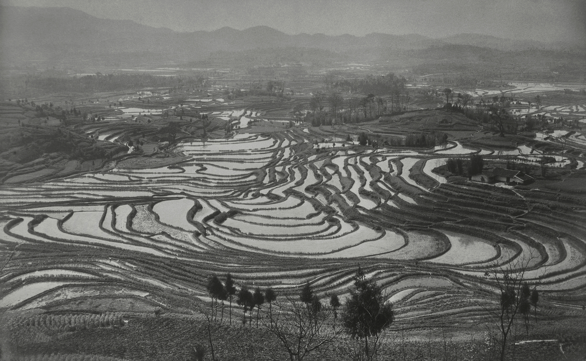 Xue Zijiang, Before Spring Ploughing, Sichuan Province, 1957, printed on fine heavy paper, mounted on cardboard, 50.3×83.5cm, courtesy of Huang Jianpeng Gallery 黄建鹏画廊