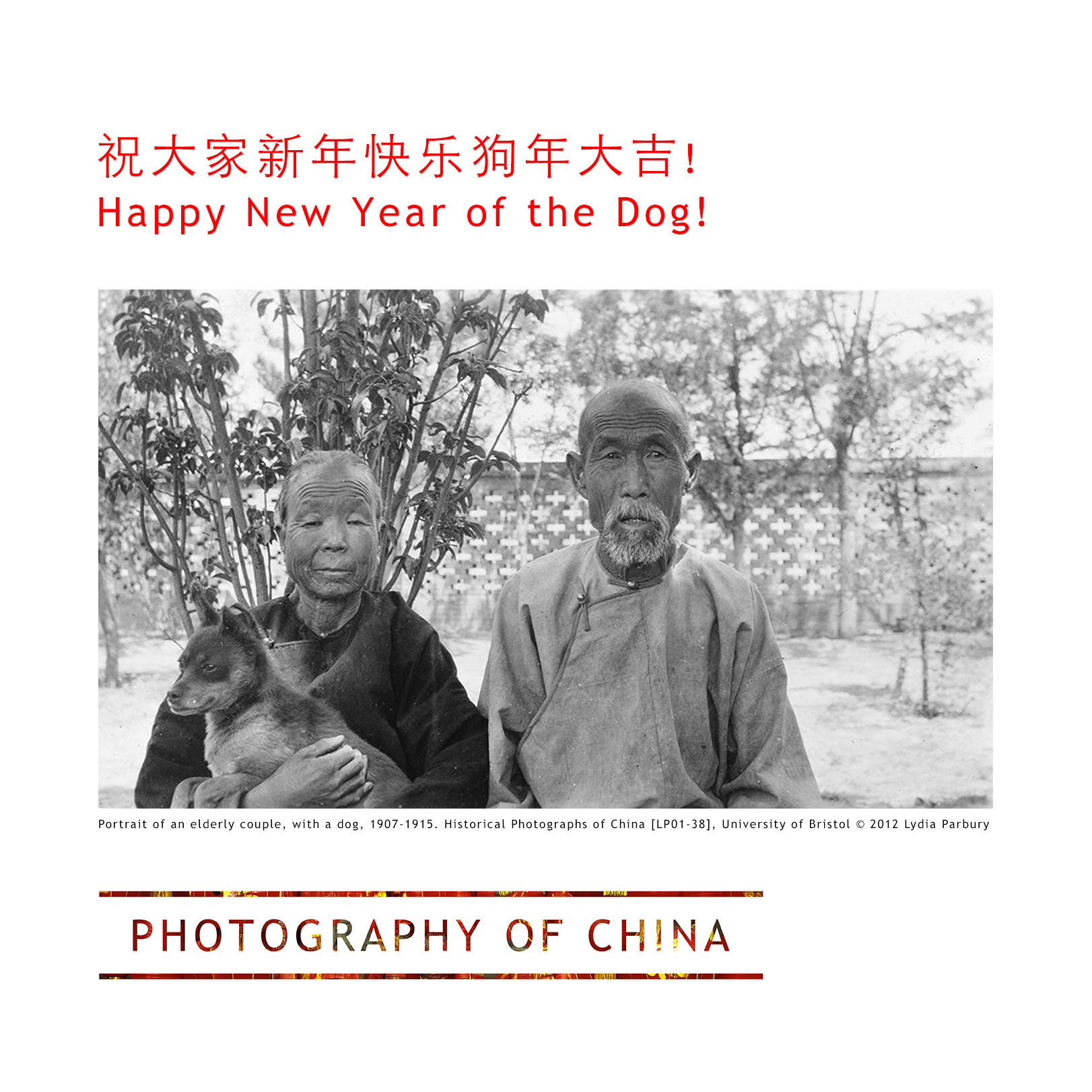 happy-new-year-of-the-dog-2018-photography-of-china.jpg