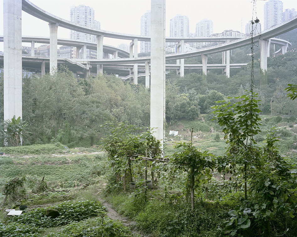 yan-wang-preston-forest-2010-2017-photography-of-china--11.jpg