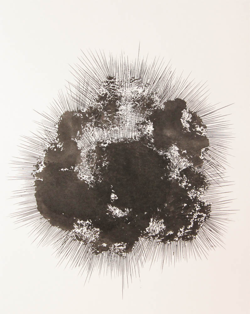 Big sea urchin