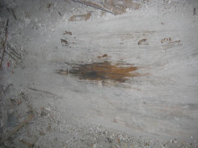 Main Level Floor 2 .JPG