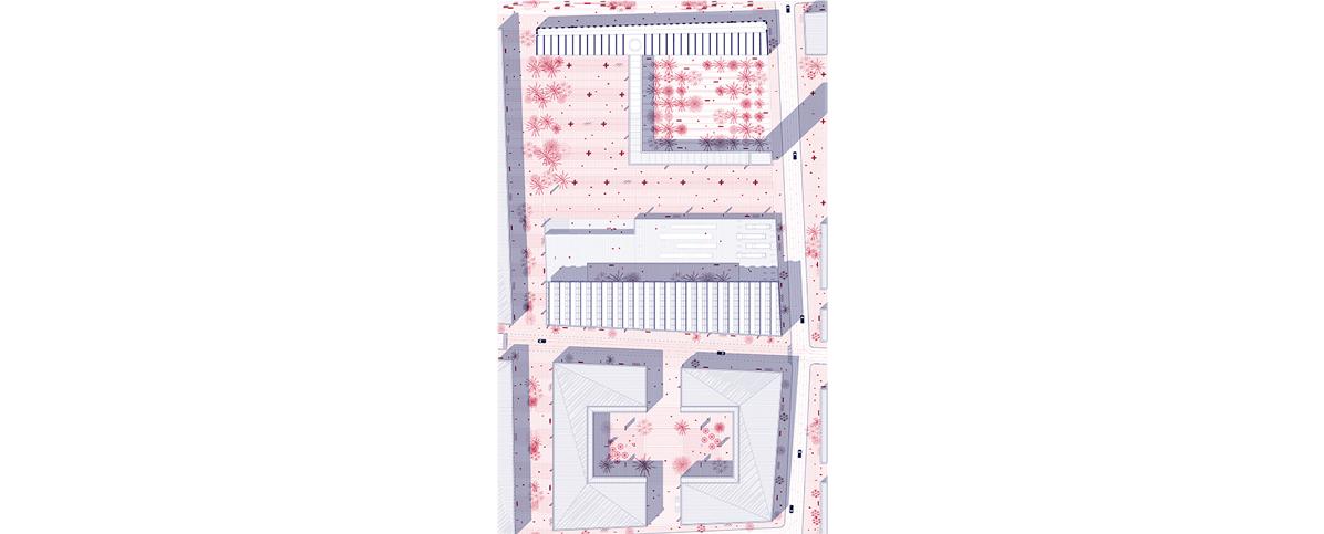 plano 1 500.jpg