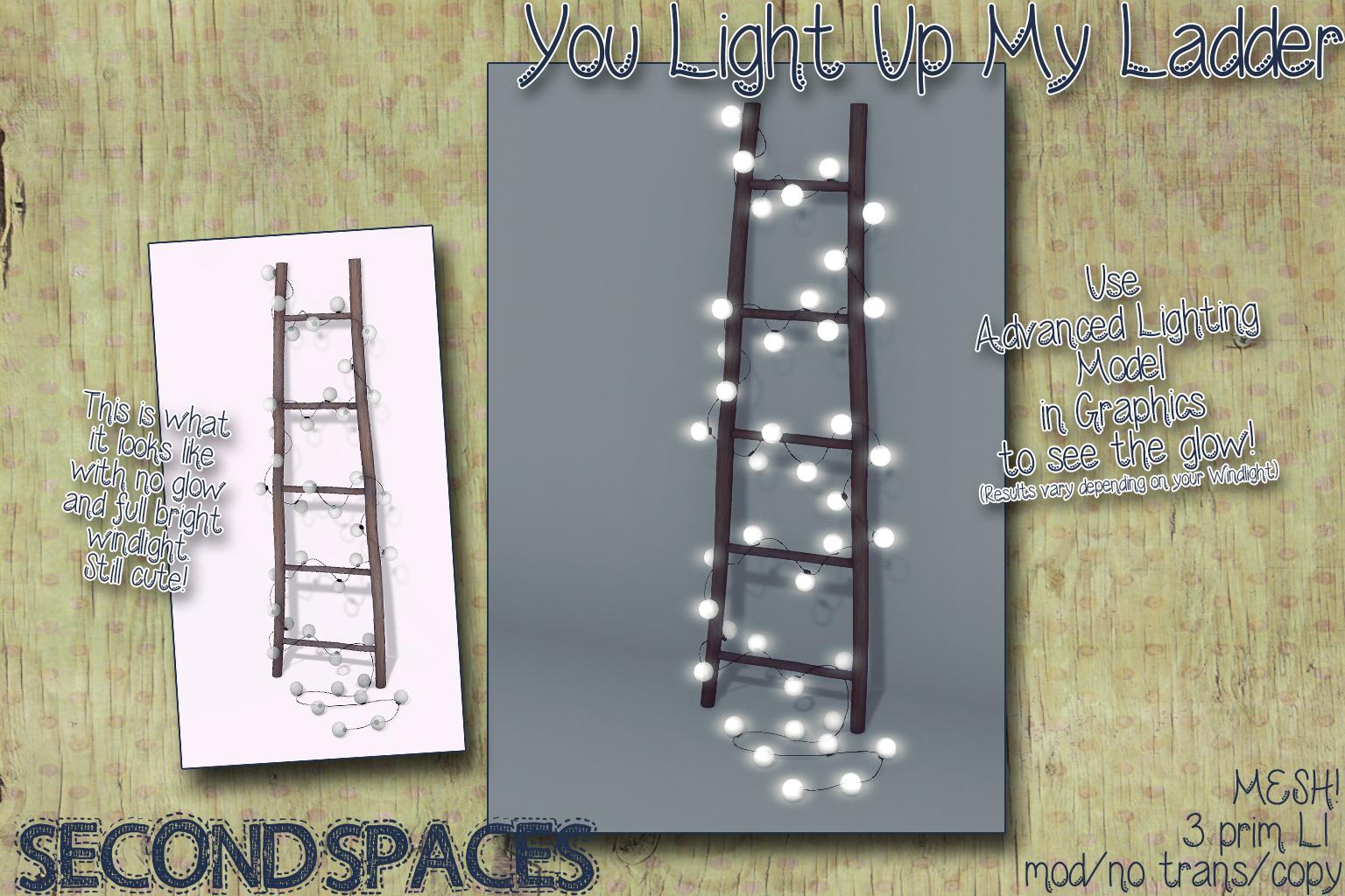 lighted ladder_vendor.jpg