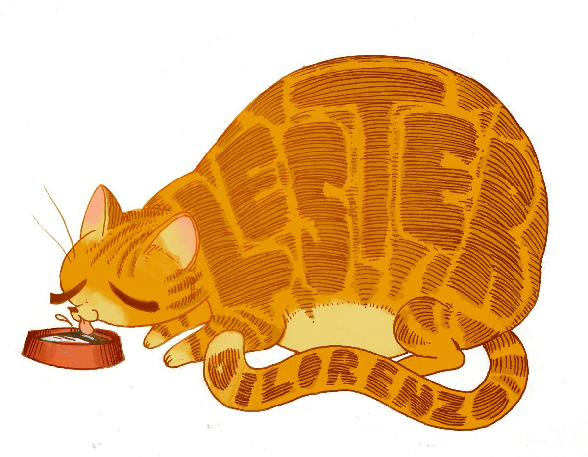 catname.jpg
